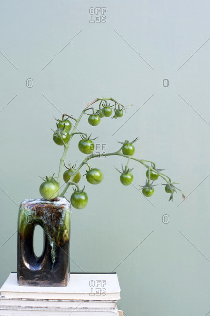 Green unripe tomatoes growing in vase standing on top of stack of books