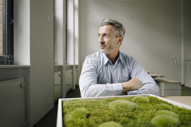Businessman sitting by moss frame at office