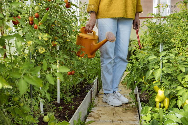 Woman holding watering can and gardening equipment while standing at greenhouse