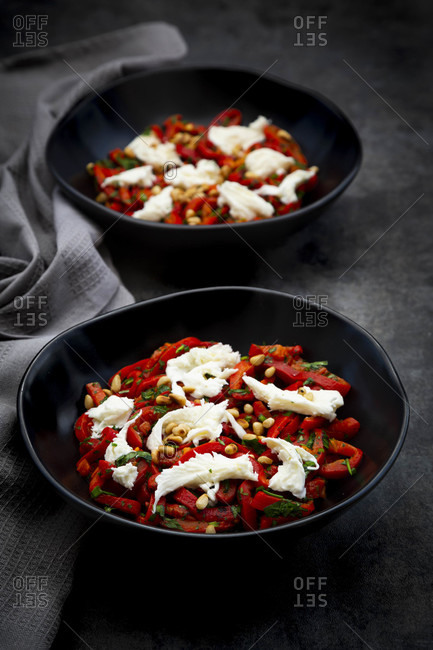 Two bowls of vegetarian salad with red bell peppers- mozzarella- roasted pine nuts- parsley and chive