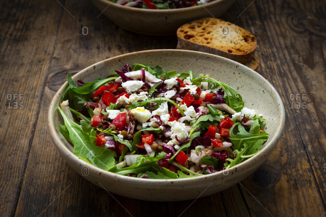 Bowl of vegetable salad with lentils- arugula- red bell pepper- feta cheese andradicchio