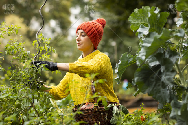 Mid adult woman in warm clothing gardening while standing at urban garden
