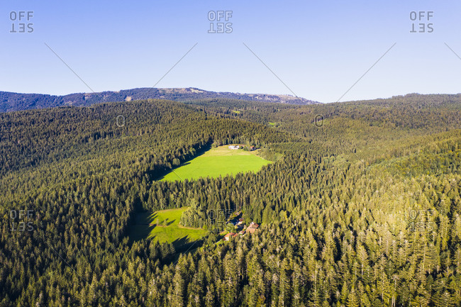 Drone view of glades in Bavarian Forest