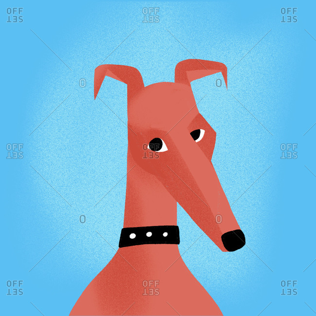 Portrait of a dog in against a blue background
