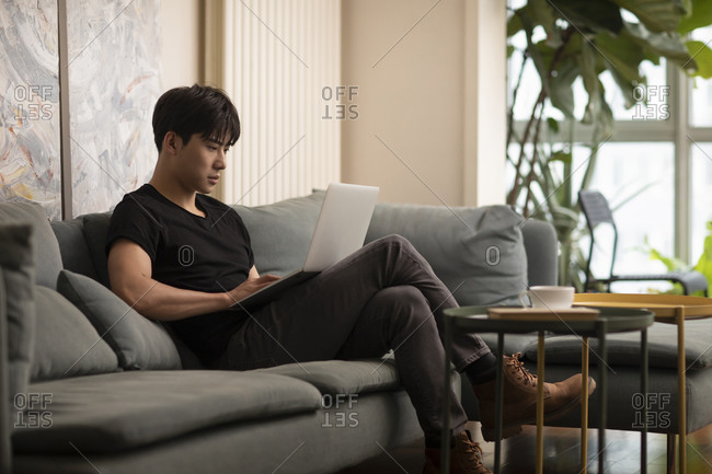 Young Chinese man using laptop at home