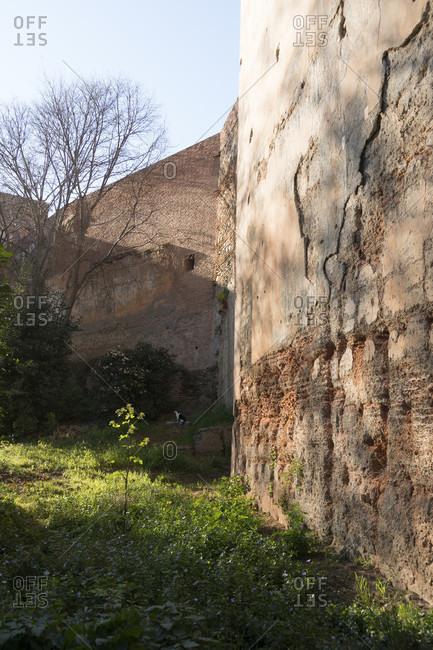 Granada (Spain), alhambra, fortress wall, morning light