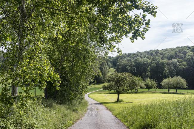 Lauterbach, breitenbrunn, hessen, germany. field landscape in odenwald.