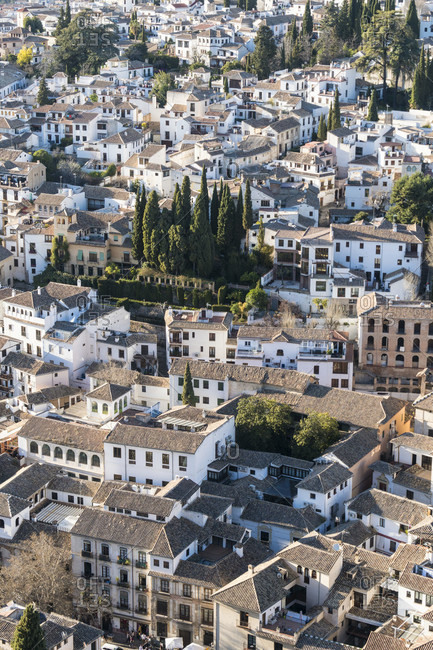 Spain, granada, view from the alhambra towards albaicin, cypresses