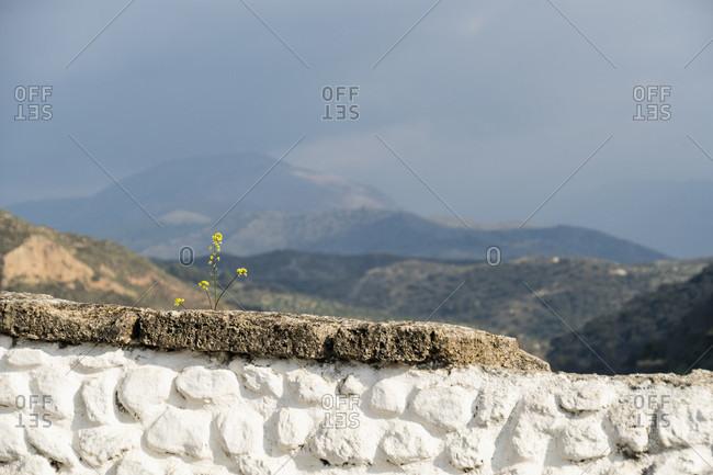Spain, granada, sacromonte, historic district, carril de los coches, viewpoint