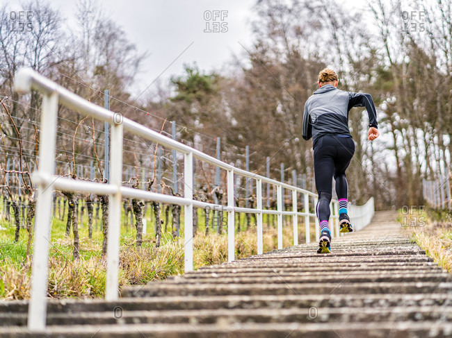 Man, 30 years old, jogging on kappelberg, remstal, Baden-Wurttemberg, Germany