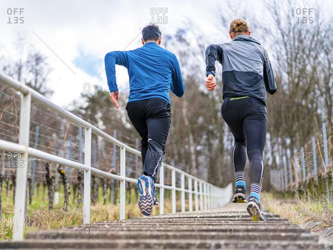 2 men, 21 years, 30 years, jogging on kappelberg, remstal, Baden-Wurttemberg, Germany