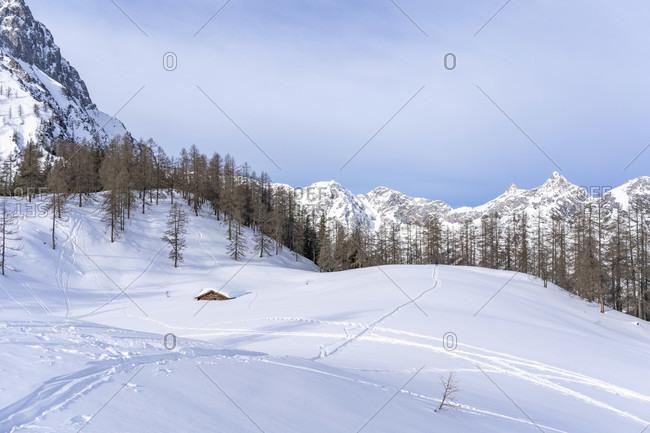Europe, Austria, berchtesgaden alps, salzburg, werfen, ostpreussenhütte, bluhnteckalm in the snowy winter landscape