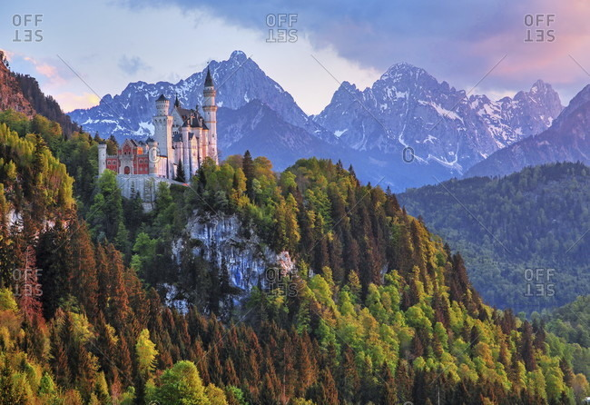 Spring landscape with neuschwanstein castle against tannheim mountains, hohenschwangau, romantic road, ostealgia, algae, swabia, bavaria, Germany