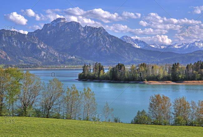 Spring landscape at forggensee against sailing (2047m) of the ammergau alps, halblech, romantic road, ostealgia, algae, swabia, bavaria, Germany