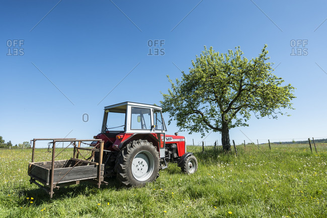 May 7, 2020: michelstadt, hessen, Germany, massey ferguson tractor, year of construction 1983, 47 hp, type 254 s, displacement 2500 ccm