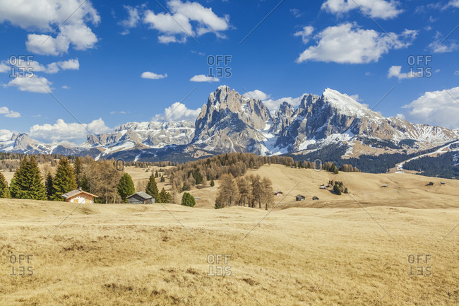 Alpine landscape of the seiser alm, alpe di siusi with with the sassolungo, langkofel and the sassopiatto, plattkofel in the background, dolomites, south tyrol, italy