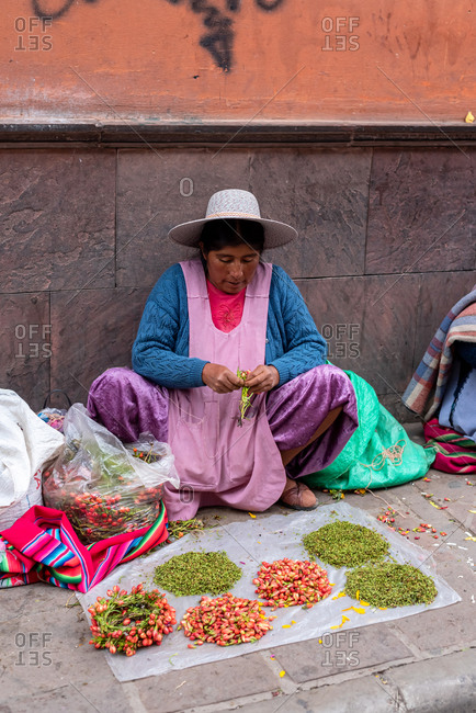 February 24, 2020: Woman wearing traditional clothes and selling petals on the street. Potosi, Bolivia