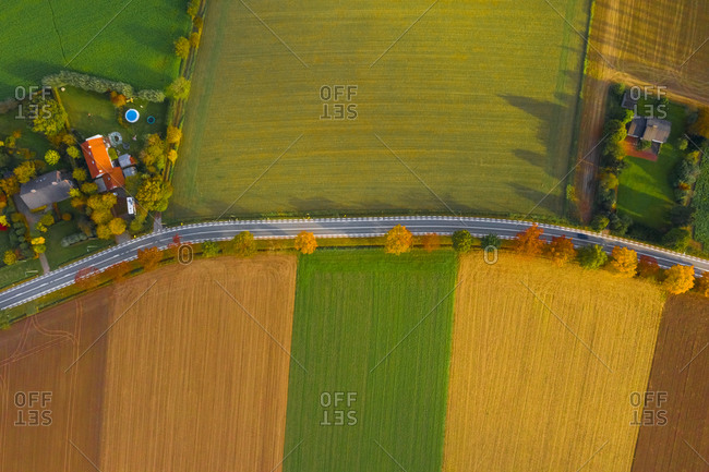 Aerial view of street in between colourful trees/fields in Belgium.