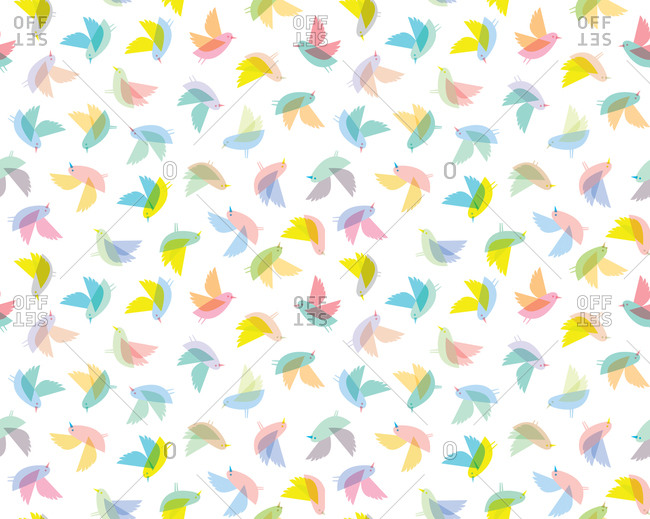 Illustration of colorful bird patterns