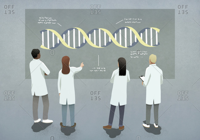 Scientists examining and discussing DNA double helix diagram