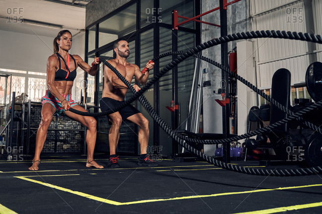 Full body of young strong muscular female and male athletes exercising on battle ropes during fitness workout in modern sports club