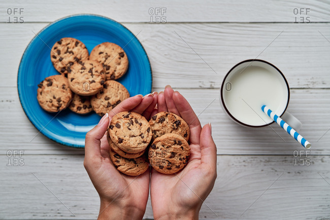 Top view of crop anonymous woman holding pile of chocolate chip cookies in hands while having breakfast with mug of milk