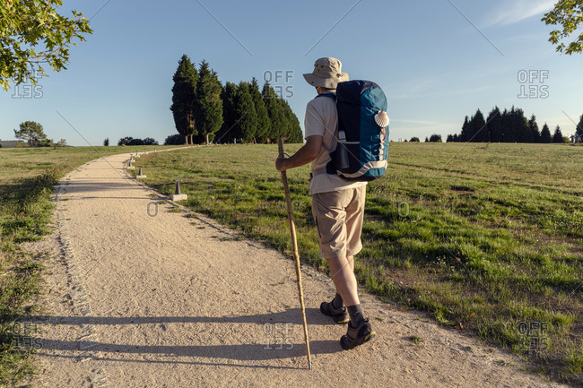 Back view of unrecognizable male traveler with rucksack and wooden stick walking on rough path between trees in summer