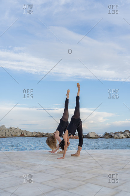 Full body of talented slim female dancers in similar black leotards standing on tiptoe with hands on floor and stretching legs