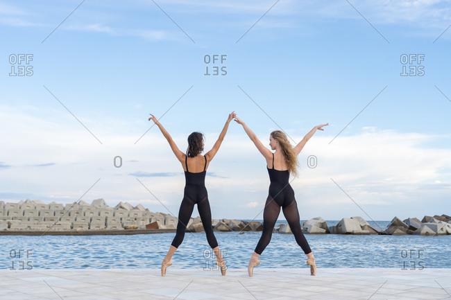 Back view full body of talented slim female dancers in similar black leotards standing on tiptoe