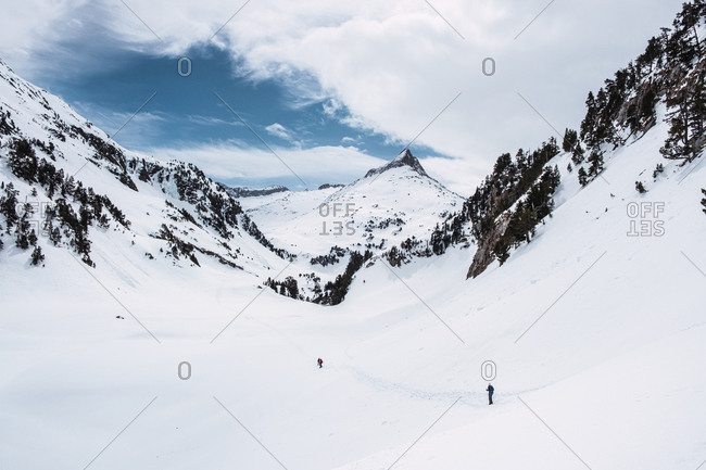 Traveler skiing on valley against mountain slope covered with coniferous trees and snow in sunny winter day