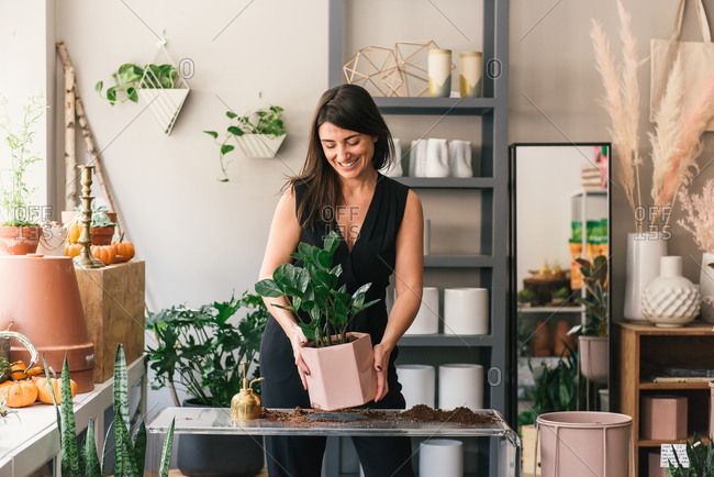 Smiling florist holds pretty pink potted plant in shop display