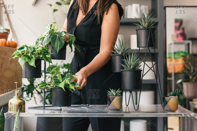 Half body crop of woman moving around plant display after workshop