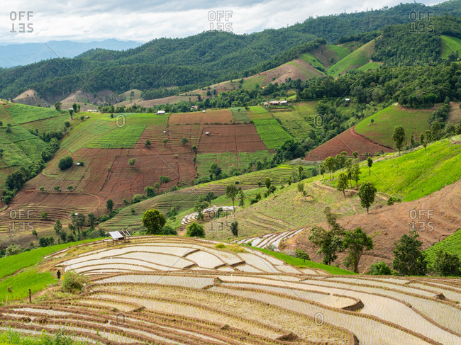 Mountain agricultural area and the rice terraces
