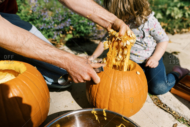 Little girl carving out pumpkins for Halloween with her dad