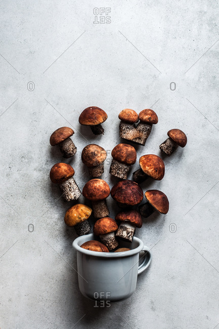 A gray metal mug with spilled out boletus against a ceramic tile.