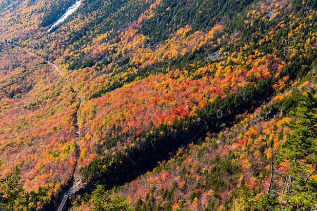Colorful autumn trees in the white mountains of new Hampshire.
