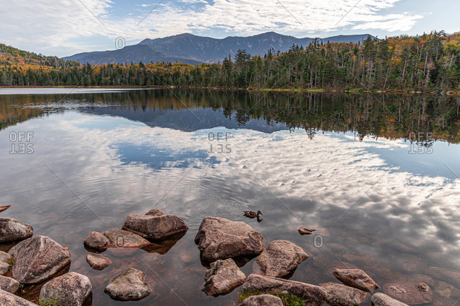 Fall foliage reflections in calm lake in the white mountains of nh.