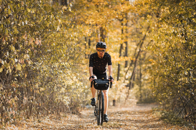 Bicycle tourism: man rides a touring bike through the forest.