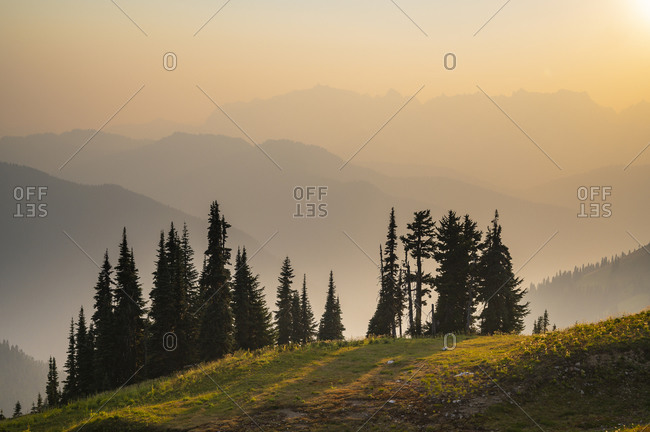 Wildfire smoke over the cascade mountains with a small grove of trees