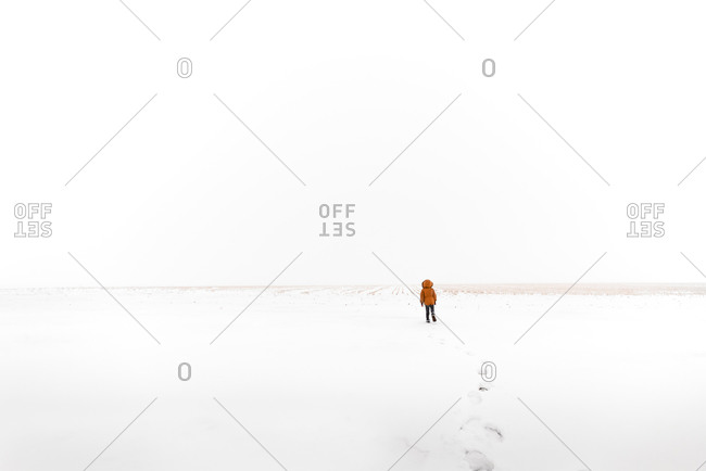 Boy walking through the snow to an open field in the country