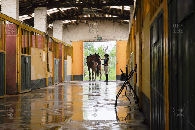 The stable door young women and horses