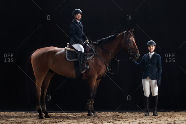 The portrait of handsome the sisters and horses