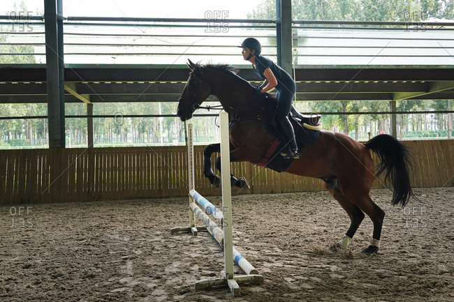 Riding a horse jump barrier bar young woman