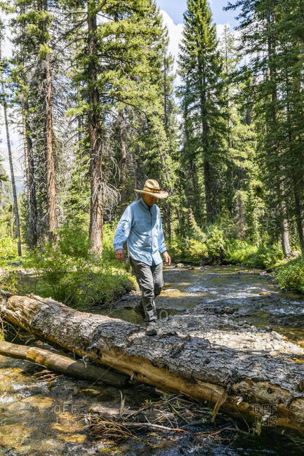 USA, Idaho, Sun Valley, Man crossing river in forest