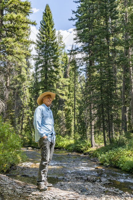 USA, Idaho, Sun Valley, Man standing on fallen tree over river in forest