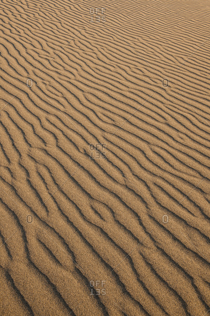 Close-up of Wind pattern on sand