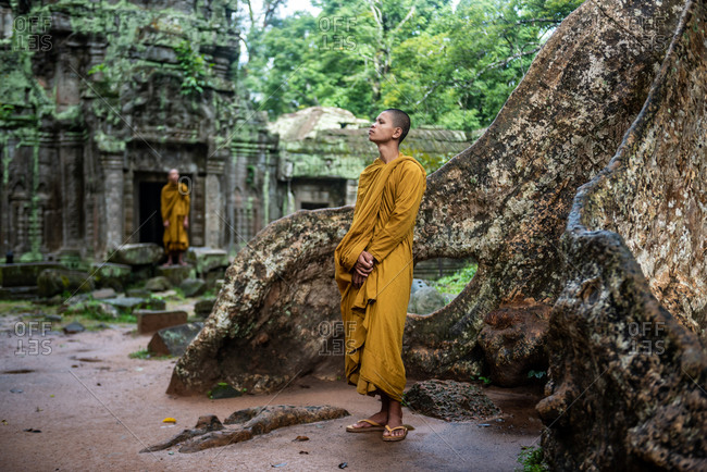 TA PROHM, ANGKORIAN TEMPLE, SIEM REAP, CAMBODIA - 28 October 2014: Monks appreciate temple environment.