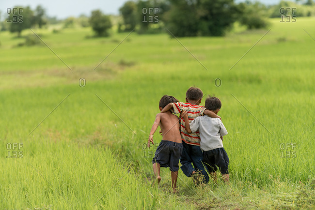 KOMPONG THOM, CAMBODIA - 2013 August 15: Local kids make their way home through paddy fields.
