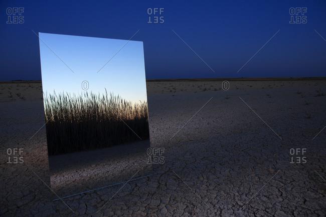 Mirror reflecting grass and dry cracked soil of Lagunas de Villafafila nature reserve at dusk