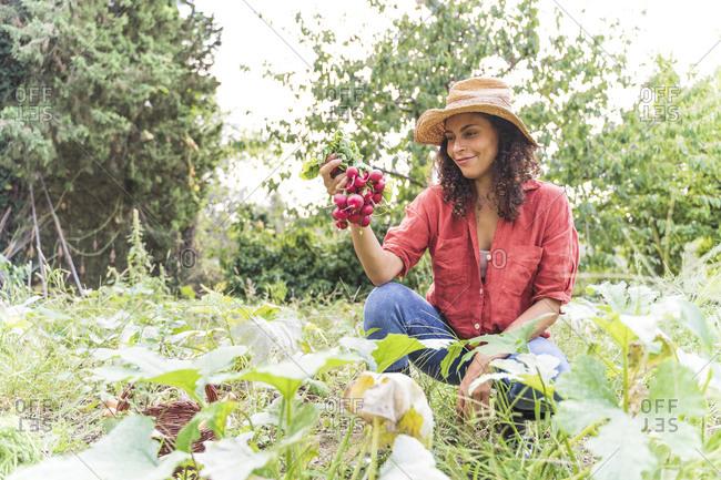 Smiling woman harvesting organic radish at vegetable garden